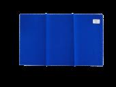 Blaumaßstab Lichtechtheitstyp 2, 25 x 15 cm
